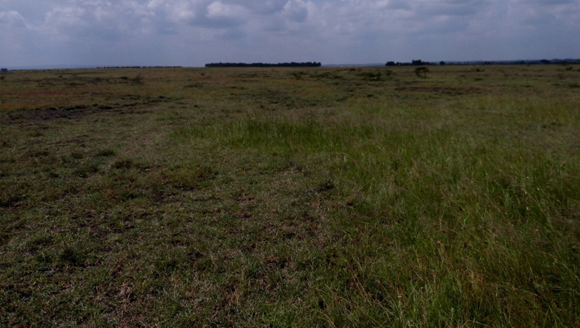 Buy Beautiful Kitengela Phase 3 Land for Sale with Kings Park Limited